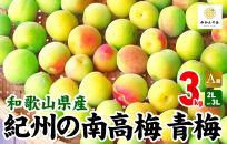 有田の南高梅3㎏2Lor3L青梅A品秀品和歌山県産梅酒作り用梅ジュース作り用