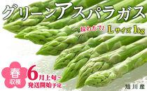 【先行予約】春収穫グリーンアスパラLサイズ1kg(6月上旬~発送開始予定)