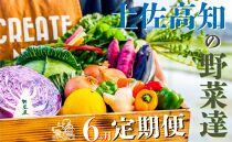 【偶数月に1度の定期便(合計6回)】野菜屋高知の新鮮野菜セット/日曜市の野菜を味わう
