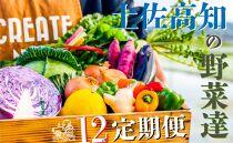 【12カ月定期便】野菜屋高知の新鮮野菜セット/日曜市の野菜を味わう