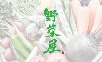 野菜屋高知のふるさとセット/生姜ベーグルと旬の野菜セットお試し便