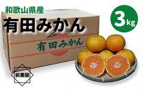 和歌山県産 有田みかん 3kg 秀品