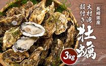 長崎県産 大村湾殻付き牡蠣セット 3Kg