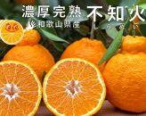 【限定・先行予約】太陽園の葉付き不知火5kg 収穫翌日発送!/ORYY推薦商品