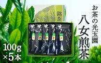 【お茶の光玉園】八女煎茶100g×5本セット