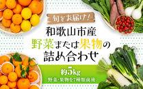 旬をお届け!和歌山市産・野菜または果物の詰め合わせ