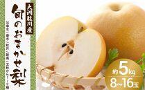 ≪ポイント交換専用≫<予約受付中>【大洲肱川産】旬の梨 約5kg(8~16玉)
