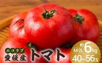 ≪ポイント交換専用≫エコラブトマト 6㎏