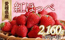 ≪ポイント交換専用≫<予約受付>紅ほっぺ 8P
