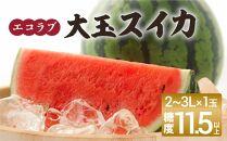 ≪ポイント交換専用≫<予約受付>エコラブスイカ1玉(大玉)
