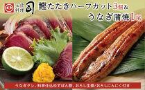 土佐料理司本店 鰹たたきハーフカット3個・うなぎ蒲焼1尾セット(国産)