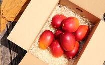 南国の恵み 完熟マンゴー(ご家庭用パック)約2.5kg