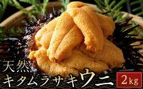 【2021年6月上旬から発送】殻付きキタムラサキウニ2kg