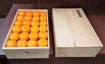 【有田果実】木箱詰め 極上有田みかん