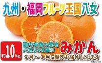 【2021年9月から発送】九州・福岡フルーツ王国八女から直送!みかん約10kg