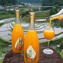 【有田産】大ちゃんの畑農園のオリジナルみかんジュース『蜜香』mikan お祝いや季節の贈答、慶弔にもご利用ください。