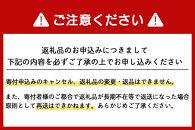 【新千歳空港限定:雪ミク】雪ミクちゃん*ラーメン20食セット