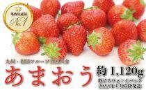【2022先行予約】九州・福岡フルーツ王国八女から直送!あまおう約1,120g(約280g×4パック)