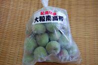 【数量限定】梅ジュースに最適!紀州特産 冷凍大粒南高梅 3kg
