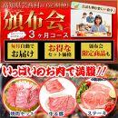 定期便肉お楽しみ南国土佐のお肉満腹3ヶ月コース