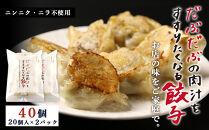 BE001だぶだぶの肉汁をすすりたくなる餃子40個(20個入×2パック)