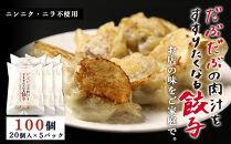 BE004だぶだぶの肉汁をすすりたくなる餃子100個(20個入×5パック)