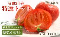 糖度8%以上 特選トマト(桃太郎CFファイト・令和3年産)約2.5kg以上