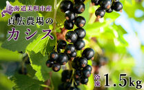 【令和2年産】貞広農場の【冷凍】カシス1.5kg