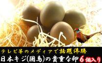 『満天☆青空レストランでご紹介!』【先行受付】日本キジ(国鳥)の貴重な卵
