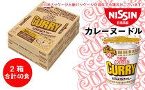 日清★カレーヌードル★2箱・合計40食
