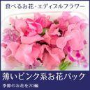 食べるお花・エディブルフラワー/薄いピンク系約20輪/よしむら農園