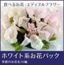 食べるお花・エディブルフラワー/ホワイト系約20輪/よしむら農園