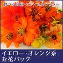 食べるお花・エディブルフラワー/イエローオレンジ系約20輪/よしむら農園