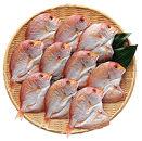 愛媛県産レンコ鯛一夜干詰合せCセット