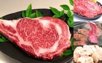 牛肉大好きセットA長崎和牛ステーキと焼肉三種盛