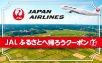 【糸島市】JALふるさとへ帰ろうクーポン(3,000点分)