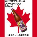 あんずを使った爽やかなカナダサワービール!