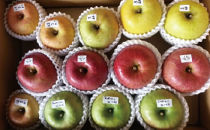 りんご味比べセット5キロ箱(旬のりんご3種以上♪)