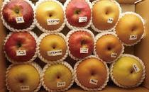 りんご・梨味比べセット5キロ箱(旬のりんご・梨4種類以上♪)