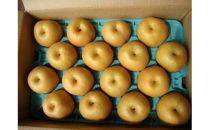梨5kg箱