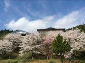 奥京都の秘湯『あやべ温泉」日帰りプラン(個室・1食付)