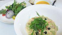 お山の有機野菜レストラン「だっぱん屋」商品券【CA01】