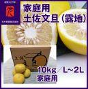 厳選 上級品土佐文旦(露地)/10kg/L~2L家庭用/元木青果