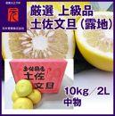厳選上級品土佐文旦(露地)/10kg/2L中物(丸秀・ムジ)/元木青果/