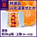 特選品山北温室せとか原体(9~12玉)/約3kg 上物/元木青果