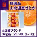 特選品土佐郷山北温室せとか2L~3L(9~12玉)約3kg/元木青果