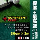 ゴルフ練習セット・標準&最高速(30cm×3m)2枚組パターマット