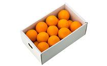 箱詰め有田産ネーブルオレンジ