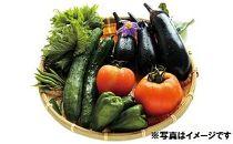 季節の野菜詰め合わせ