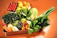 【有機JAS認定オーガニック】シェフの目線「大洲もぎたてフルーツ&旬野菜詰合せ」年間パスポート